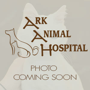 Ark Animal Hospital Staff